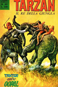 Cover Thumbnail for Tarzan (Editrice Cenisio, 1968 series) #43