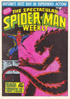 Cover for The Spectacular Spider-Man Weekly (Marvel UK, 1979 series) #358