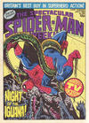Cover for The Spectacular Spider-Man Weekly (Marvel UK, 1979 series) #359