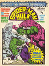 Cover for Spider-Man and Hulk Weekly (Marvel UK, 1980 series) #405