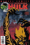 Cover for Incredible Hulk (Marvel, 2000 series) #28 (502) [Direct Edition]