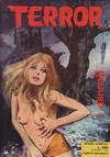 Cover for Terror (Ediperiodici, 1969 series) #29