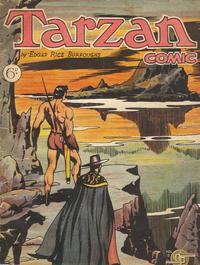 Cover Thumbnail for Tarzan Comic (Donald F. Peters, 1950 series) #v2#2