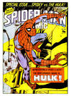 Cover for Spider-Man Comic (Marvel UK, 1979 series) #316