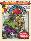 Cover for Spider-Man and Hulk Weekly (Marvel UK, 1980 series) #436