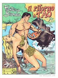 Cover Thumbnail for Blonder Panther (Norbert Hethke Verlag, 1978 series) #4