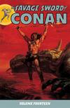 Cover for Savage Sword of Conan (Dark Horse, 2007 series) #14