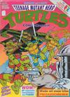 Cover for Teenage Mutant Hero Turtles (Condor, 1990 series) #29