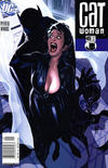 Cover for Catwoman (DC, 2002 series) #45 [Newsstand Edition]