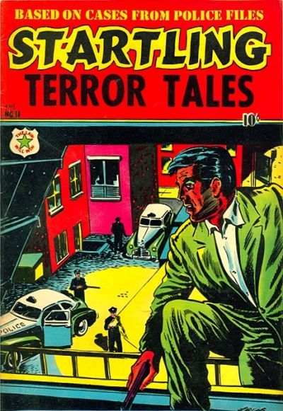 Cover for Startling Terror Tales (Star Publications, 1953 series) #11