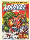 Cover for Marvel Comic (Marvel UK, 1979 series) #350
