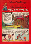 Cover Thumbnail for The Adventures of Peter Wheat (1948 series) #48 [Mrs. Conklings]