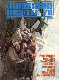 Cover Thumbnail for L'Écho des Savanes Spécial U.S.A. (Editions du Fromage, 1976 series) #10