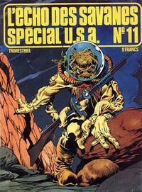 Cover Thumbnail for L'Écho des Savanes Spécial U.S.A. (Editions du Fromage, 1976 series) #11
