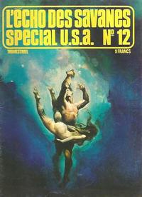 Cover Thumbnail for L'Écho des Savanes Spécial U.S.A. (Editions du Fromage, 1976 series) #12