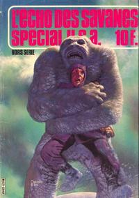 Cover Thumbnail for L'Écho des Savanes Spécial U.S.A. (Editions du Fromage, 1976 series) #22