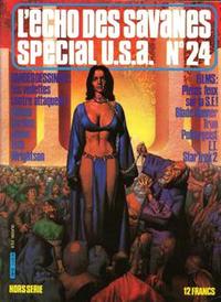 Cover Thumbnail for L'Écho des Savanes Spécial U.S.A. (Editions du Fromage, 1976 series) #24