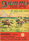 Cover for Damms Billedserier [Damms Billed-serier] (N.W. Damm & Søn [Damms Forlag], 1941 series) #6/1942