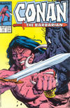 Cover for Conan the Barbarian (Marvel, 1970 series) #193 [Direct Edition]