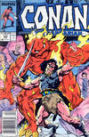 Cover for Conan the Barbarian (Marvel, 1970 series) #205 [Newsstand Edition]