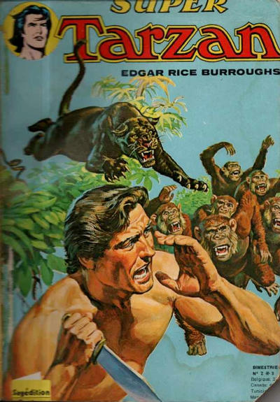 tarzan a superhero or a historical symbol history essay 1 what qualities in sundiata's character define him as a hero use specifics sundiata is described by the griot as heroic because of several qualities: his intelligence, his compassion, his bravery, his sense of justice, his charisma, his piety and his strength.